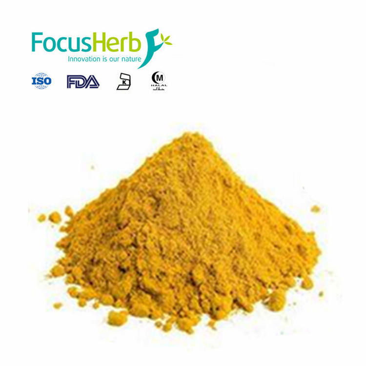 100% Natural Tumeric Extract Powder