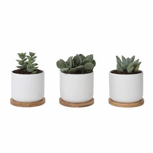 4 inch White Ceramic Succulent Pots with Bamboo Tray and Drainage Hole (Set of 3),Fits Plants,Flowers & Cacti