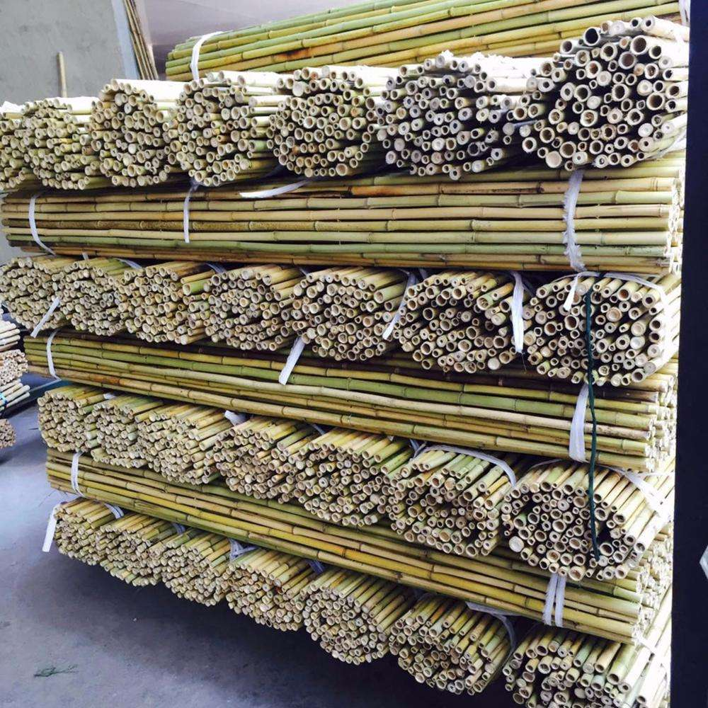 natural high quality and pole shape bamboo poles