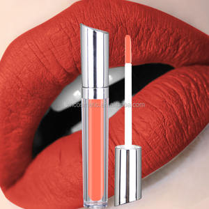 cosmetics makeup wholesale matte waterproof lipstick