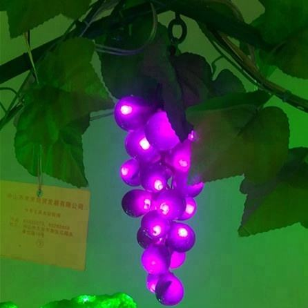 2018 beautiful style grape light string and decorative light