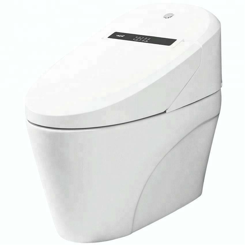 Cheap Price Bathroom Clean Vagina Bidet Uls Automatic Toilet WC