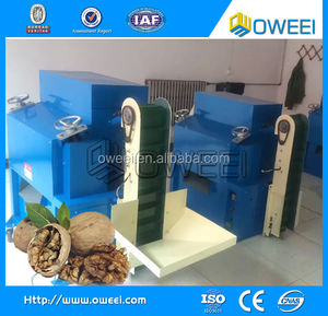 Professional automatic walnut processing equipment