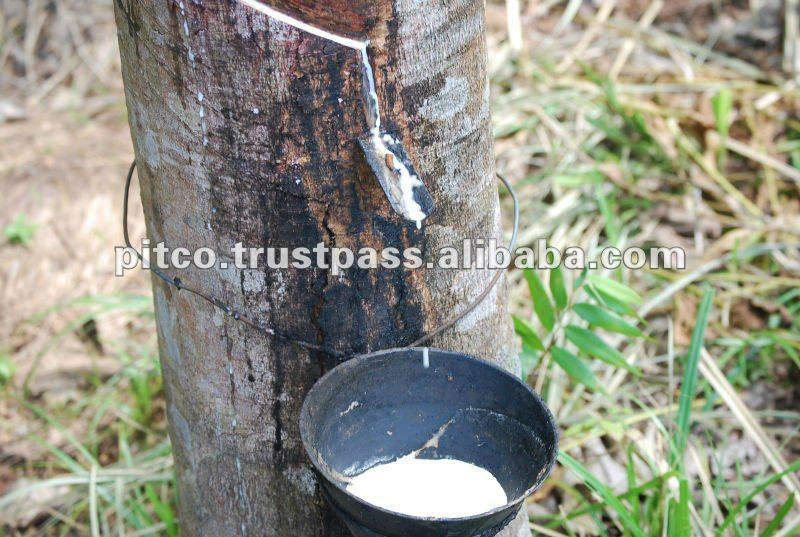 Natural Rubber Latex High Amonia 60% Dry Rubber Content (Latex HA 60% DRC)