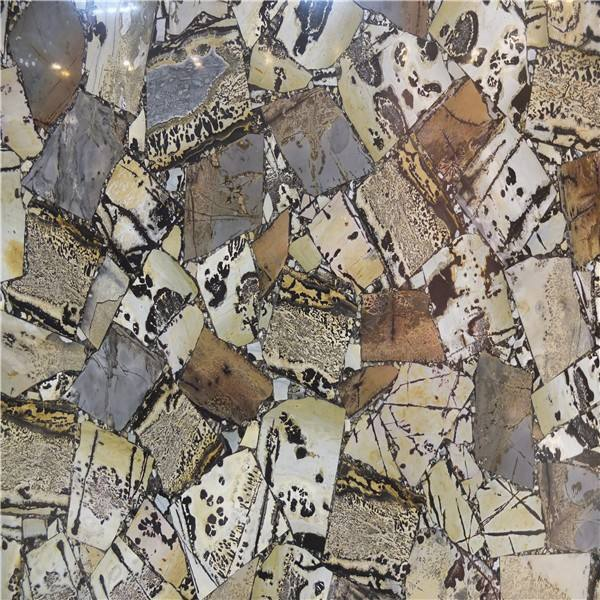 Fossil Stone Petrified Wood slab for luxury villa design