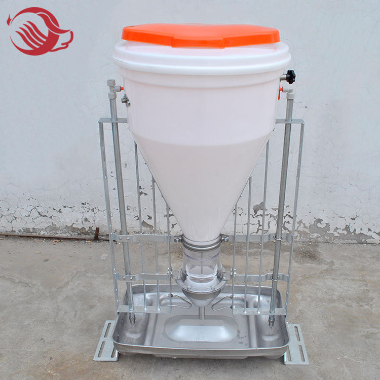 Automatic dry and wet feeder, free feeding trough