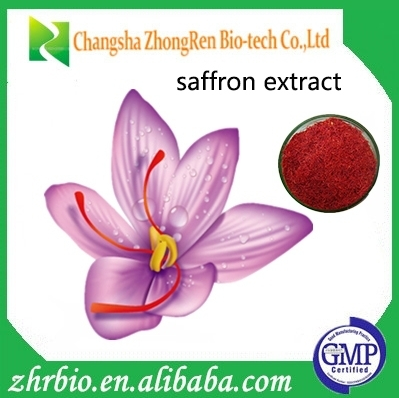 Best selling natural kesar Saffron Extract with low price