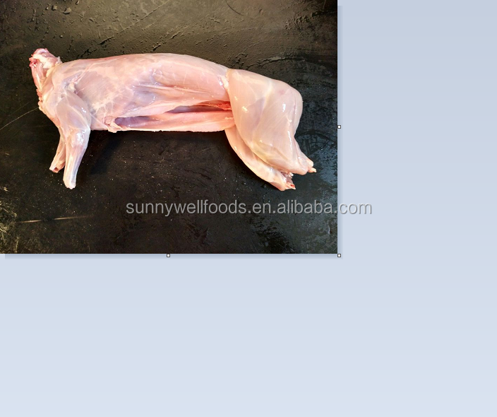 frozen whole rabbit meat