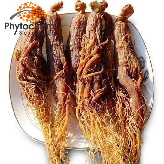 Korean Red Ginseng Root/Panax Ginseng Root Low Pesticides Bulk Price