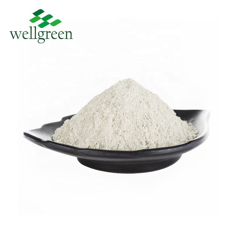HIigh qualità naturale bianco clinoptilolite zeolite in polvere per additivo per mangimi