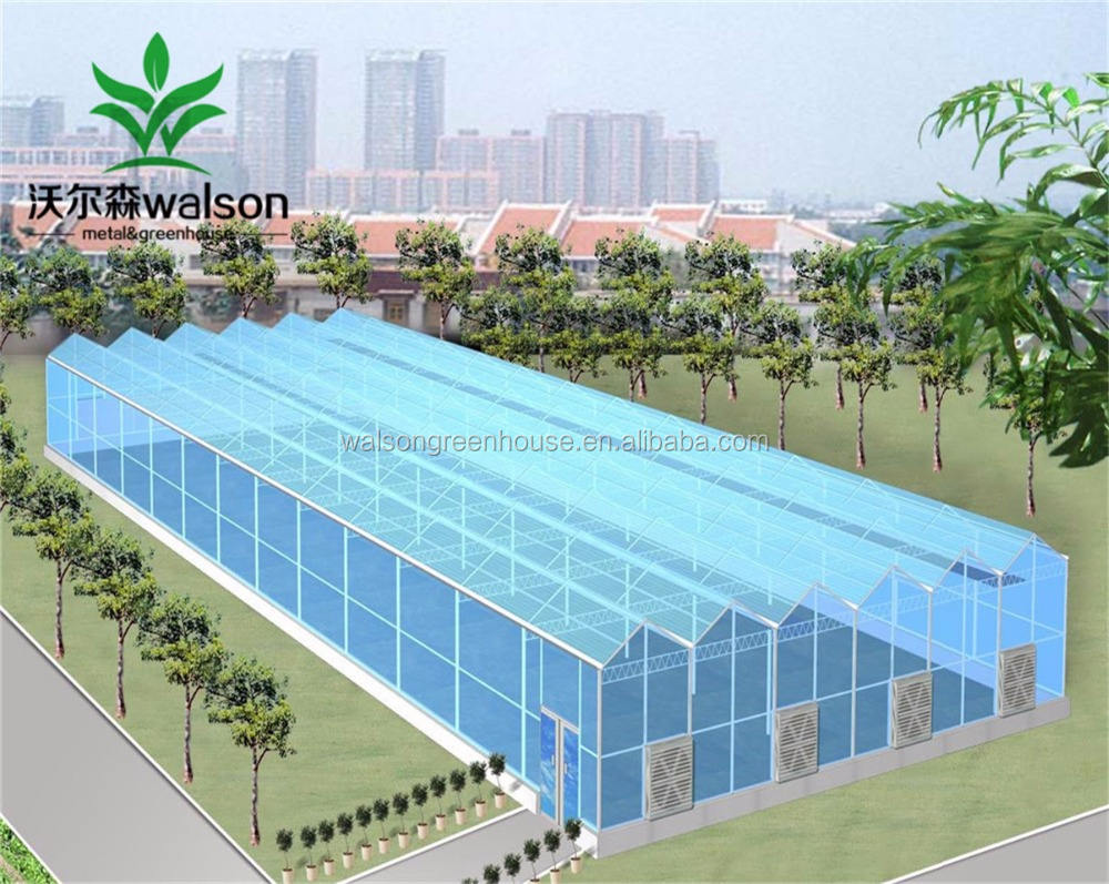 Factory Price Glass Agriculture Multi Span Green House