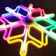 for Christmas Sculpture Light Decoration GV Popular Wholesale LED Outdoor Meteor Effect Snowflake 2D Motif Neon Flex Light Rope Light Sculpture Garden Decoration