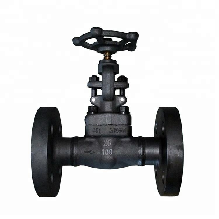 Forged Bolted Bonnet Flanged Connection DN20 PN100 Globe Valve
