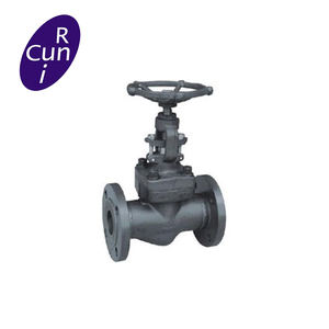 CLASS150~2500 Bolted Bonnet Forged Globe Valve
