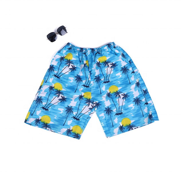 Custom Hot Summer Mens Print Surf Swim Pant Holiday Plus Size Quick Dry Beach Shorts