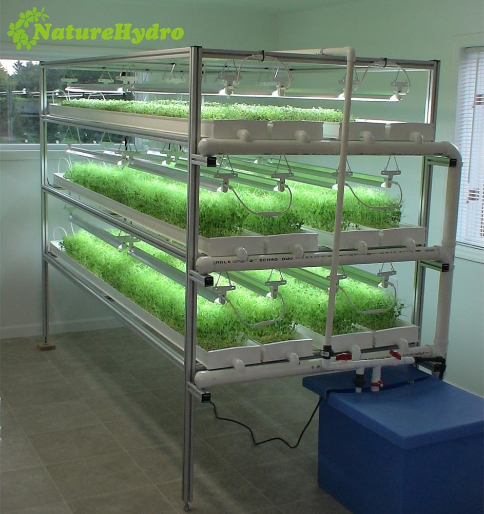 Commercial greenhouse hydroponic tomatoes/lettuces/Fodder growing system