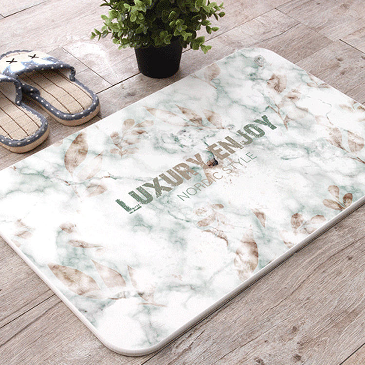 Home decor entrance ground protective diatomite big floor mat carpet