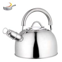 Colorful paint ss kettle teapot stainless steel quick water boiling tea whistling kettle with blue paint