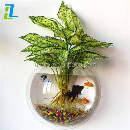 Shopping New Products Fashion Fishbowl Hanging Acrylic Wall mounted Fish Tank Aquarium Bubble Bowl Fish Plant
