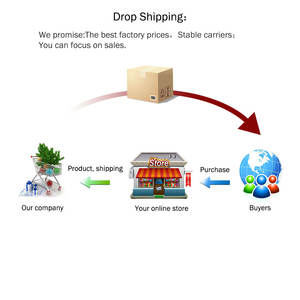 Professional Dropshipping Service for Online Retailer Global Dropshipping With Good Price 1688 Agent Dropshipping Fast Delivery