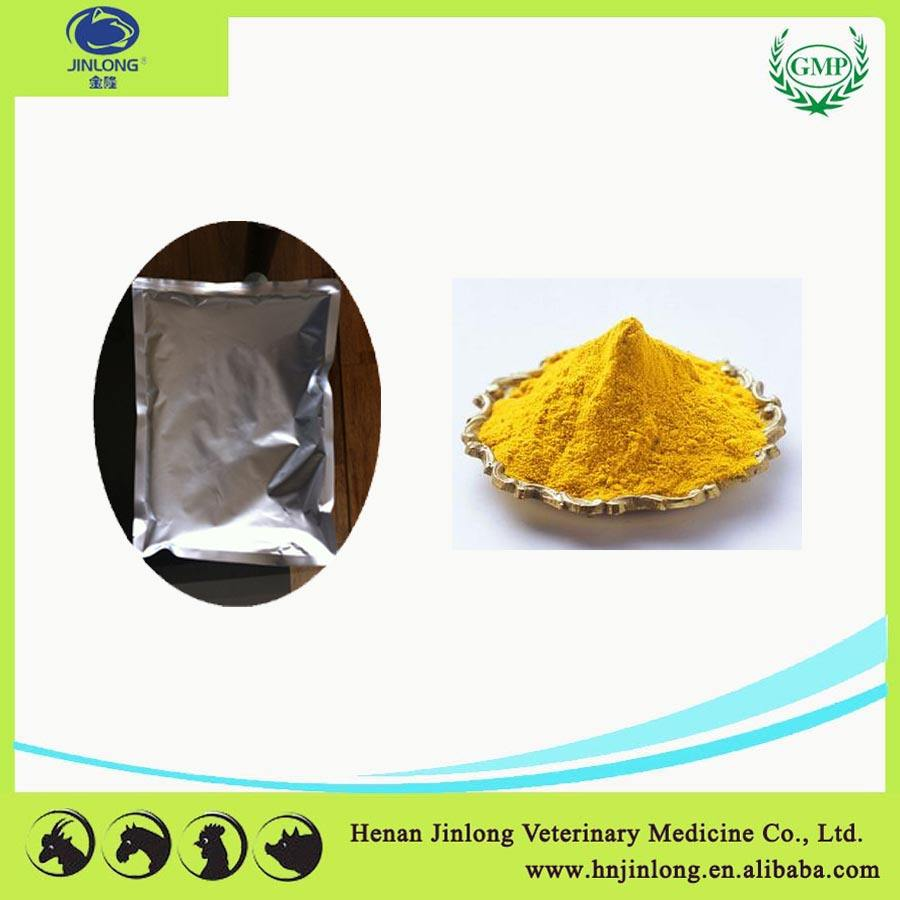 Buy Poultry Drugs for Chickens Amphotericin B 2% Powder