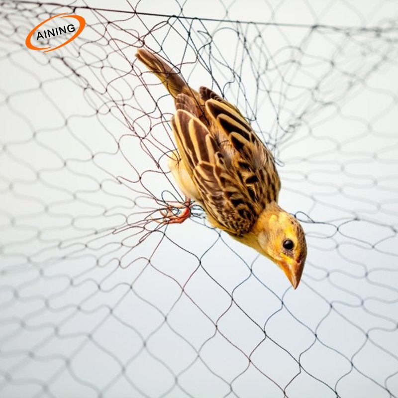 2.1x9m 110D//2Ply 3 Pockets 15*15mm Bird Mist Capture Catching Netting
