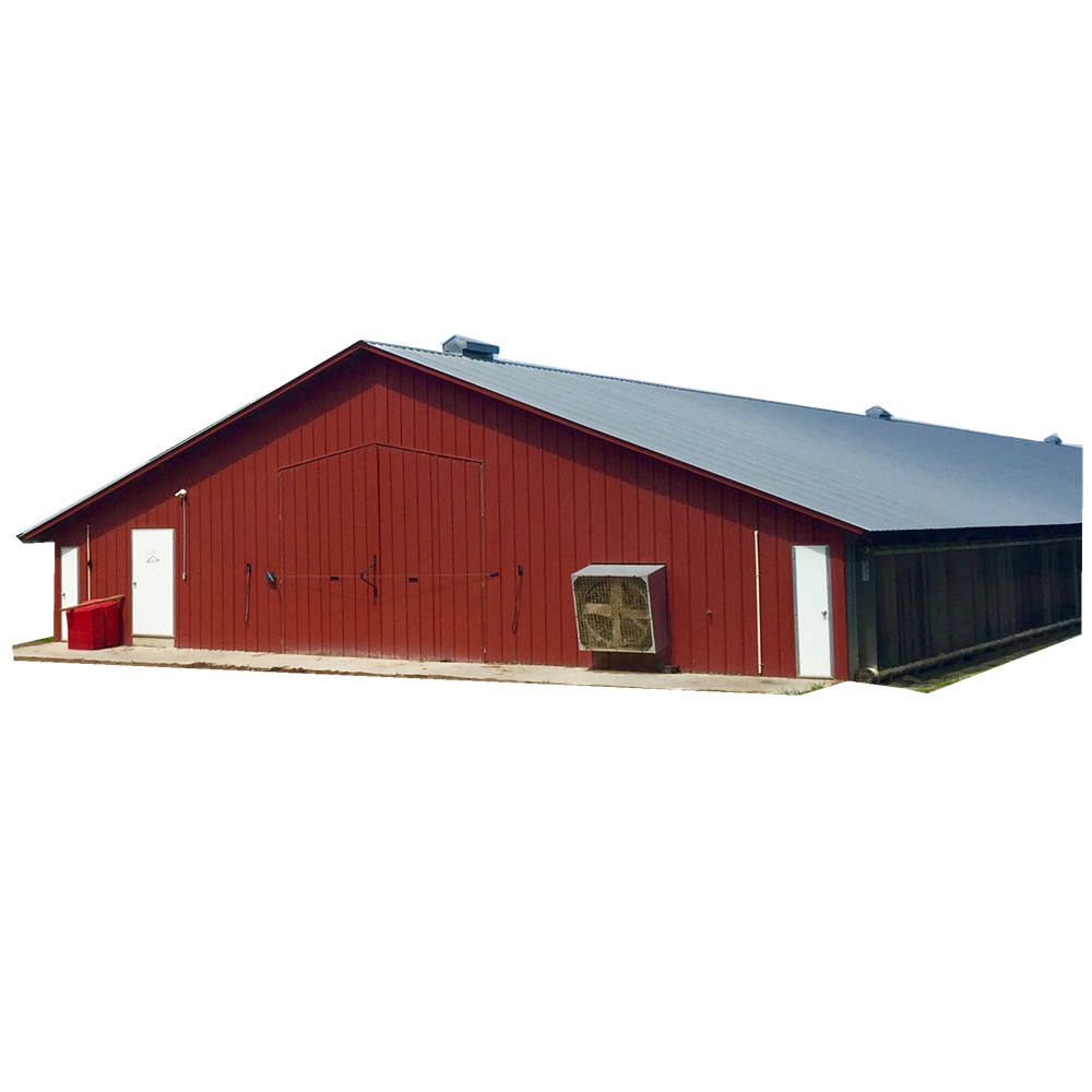 Light steel structure layer poultry farming