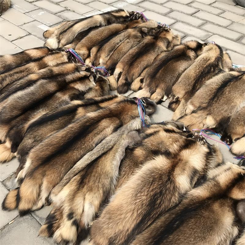 Factory raccoon fur skin / raccoon fur for hood