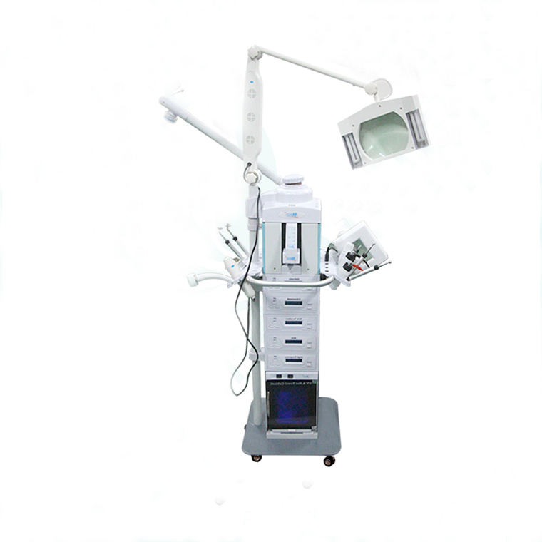 CE approved multifunction facial beauty machine /jade facial beauty machine