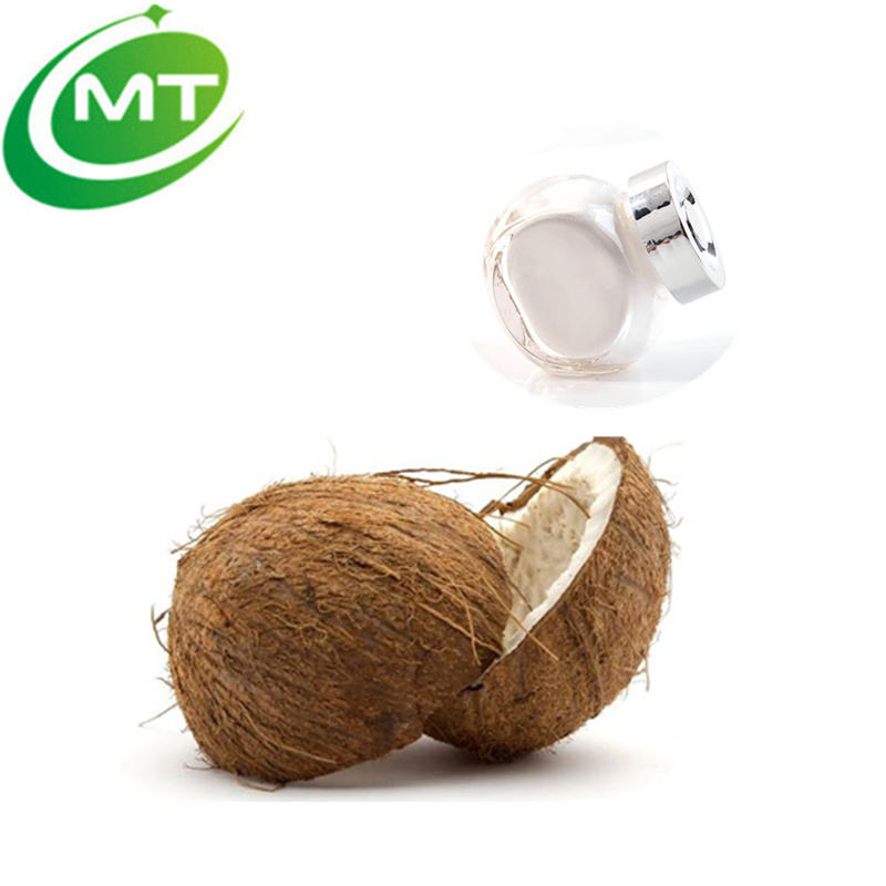 organic low fat coconut milk powder desiccated coconut powder