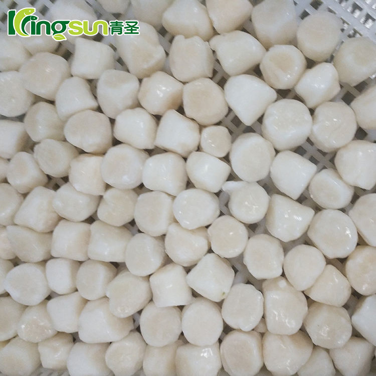 perfect frozen bay/sea scallop meat supplier