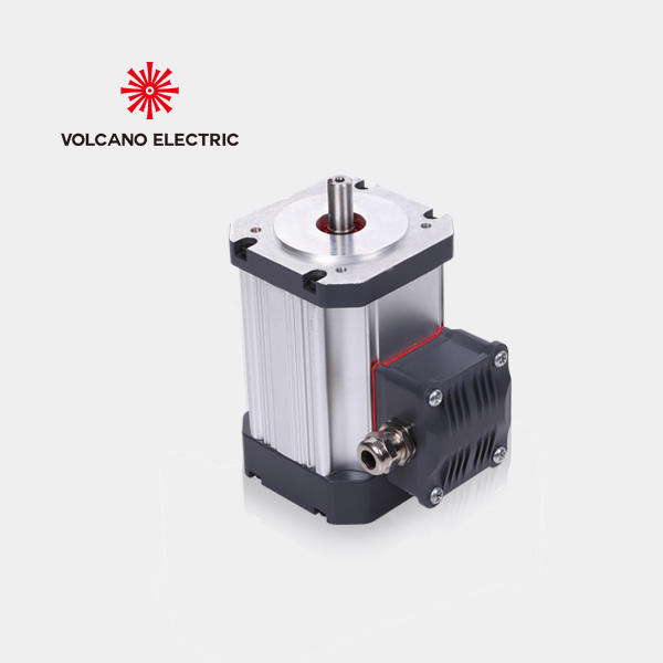 Personalizar 48 V BLDC Motor Brushless DC 5kw 10hp