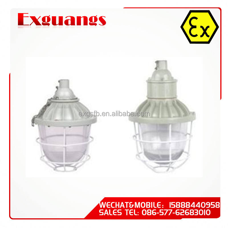Lampe led antidéflagrante/ATEX, éclairage étanche, IIB IIC DIP IP65