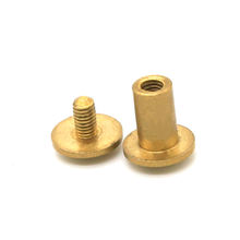 M2.5 Brass Gold Chicago Screw Male and Female Screws for Fashion Handbag