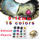 fantipearl giant 9-12mm Colored Edison big large shell round AA+ grade pearls in oyster with vacuum packing