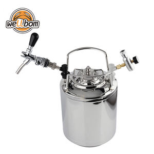 Home Brewing 10L Stainless Steel Cornelius Beer Kegs with Draft Beer Tap Corny Flow Control and Co2 Charger Kit for Sale