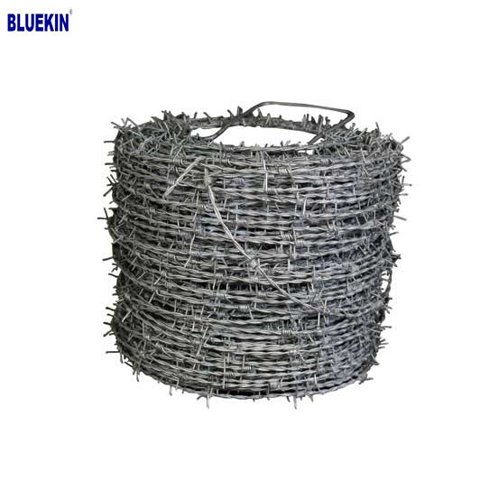 Chinese Supplier Stainless Steel Barbed Wire on Sale