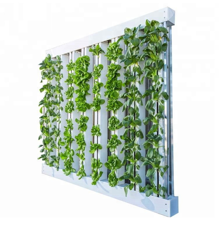 Skyplant Complete Vertical Hydroponic for Greenhouse Planting