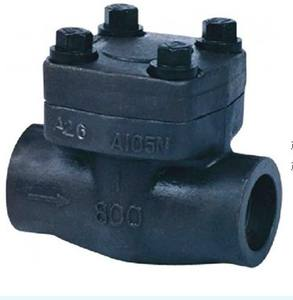Forged Carbon Steel 800# adjustable forged steel check valve