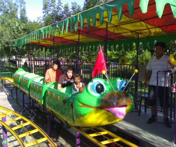 children small roller coaster in china