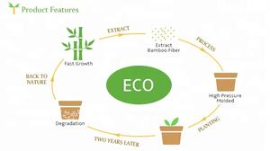 Eco Bamboo Fiber Indoor Small Plant Flower Pots For Sale