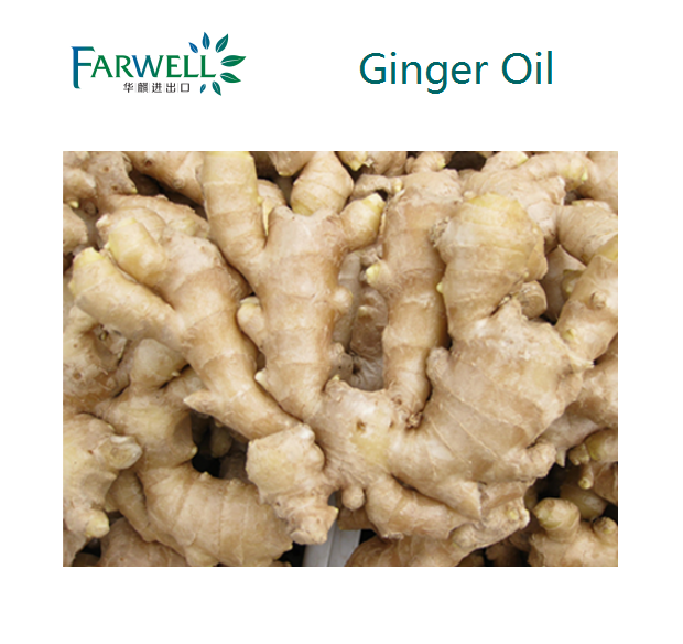 Farwell 100% Natural Ginger Oil, comply to FCC standard