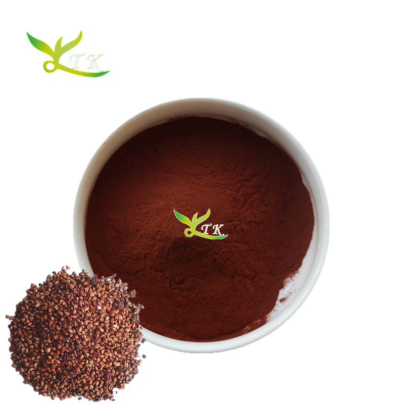 High Quality Anti Oxidant Grape Seed Extract OPC 95%