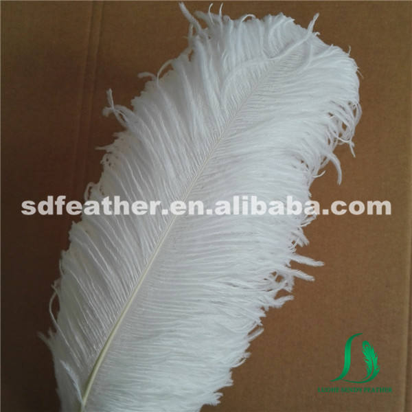 manufacture supplier enough stock 60-65cm white ostrich feathers for wedding