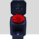 Eternal Rose Gift Box Jewelry box without flowers Valentine's Day Gift New Year Flower Box for gift