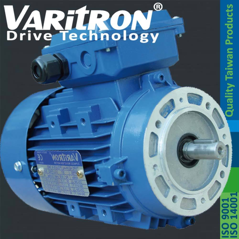 Varitron Ac electric IEC induction motor in taiwan