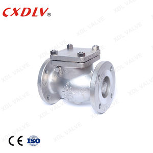 6 Inch DN100 PN40 Bolted Bonnet Carbon Steel A216 WCB Trim NO.8 Flange Swing Check Valve