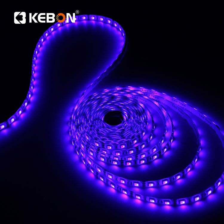 Free Sample 30 60 leds/m Smd 5050 Color Change IP65 IP67 Flexible Rgb Led Strip Light