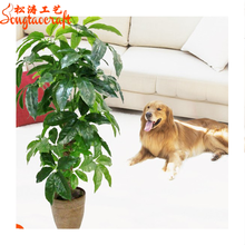 evergreen artificial types of pachira money lucky tree plant make decorative mini chinese bonsai trees and plants wholesale