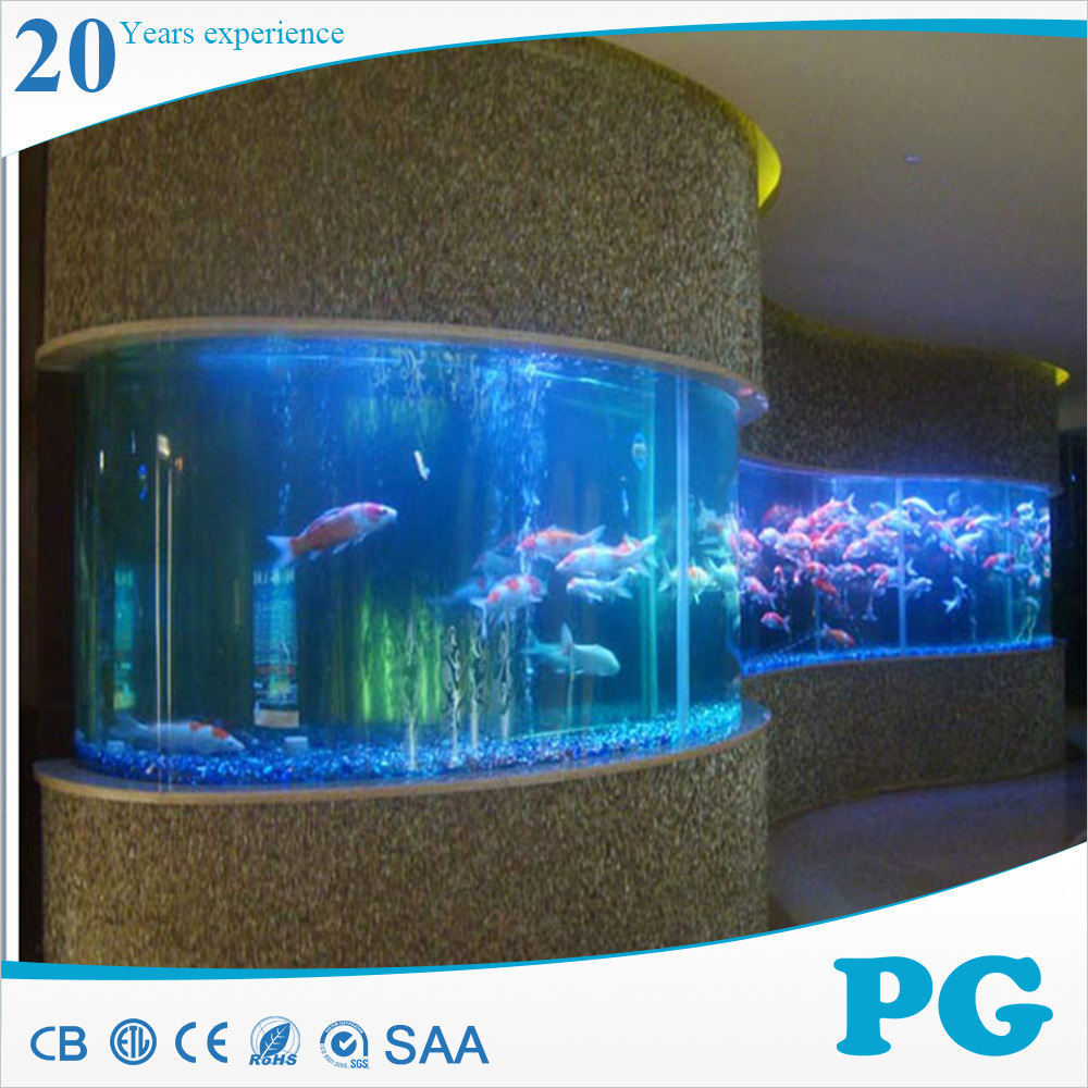 Pg Sunsun Fish on aquário